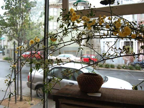 studio-choo-window-display
