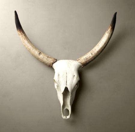 resto-animal-head