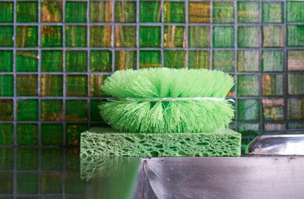 640-david-fritz-sponges-crop