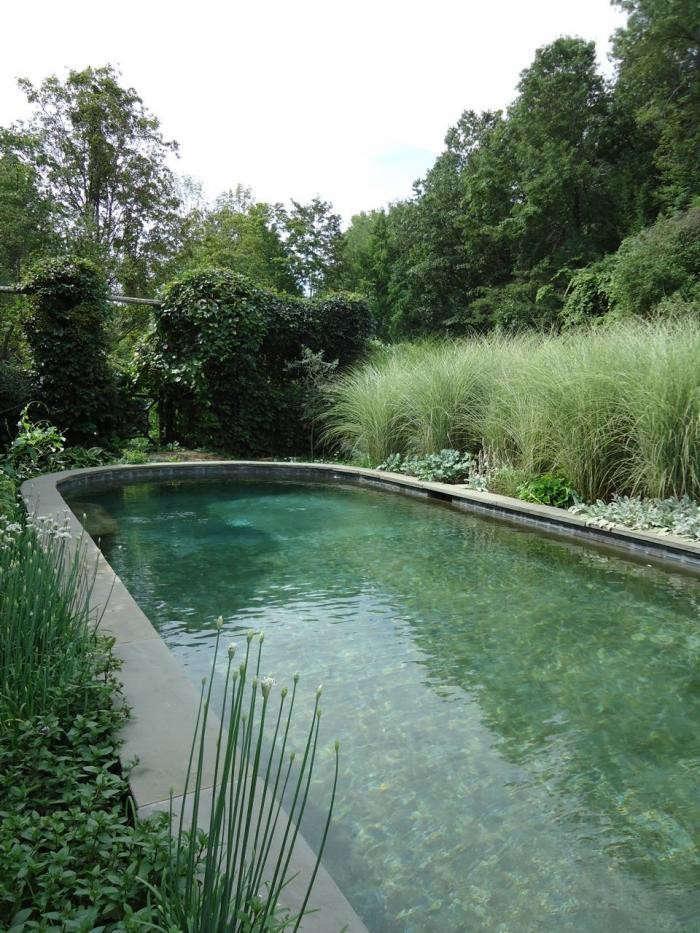 700_michael-leva-swimming-pool-jpeg