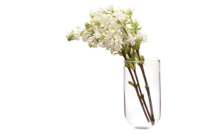 700_wall-vase-from-sprout-home
