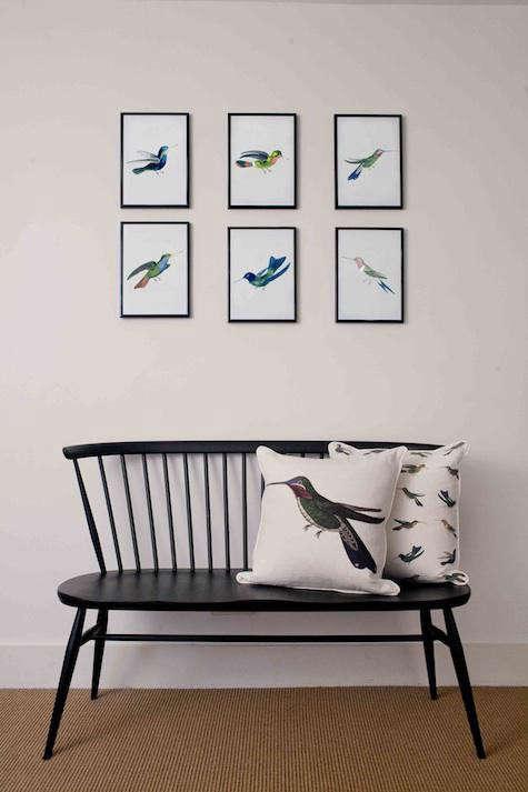 bird-pillows-natural-history