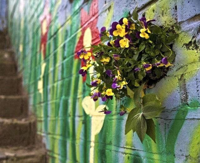 640_wall-garden-wide