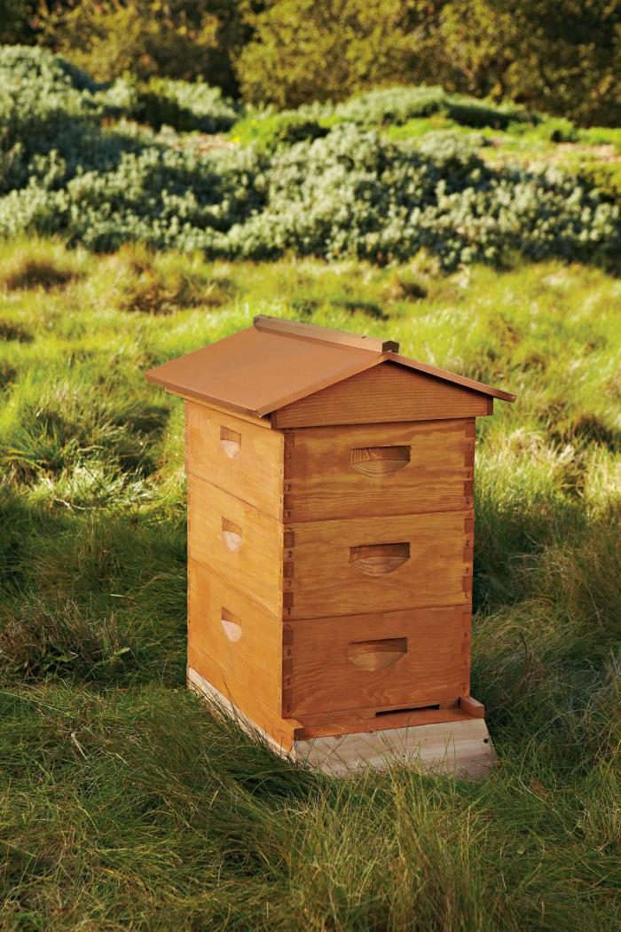 700_bee-house-agrarian