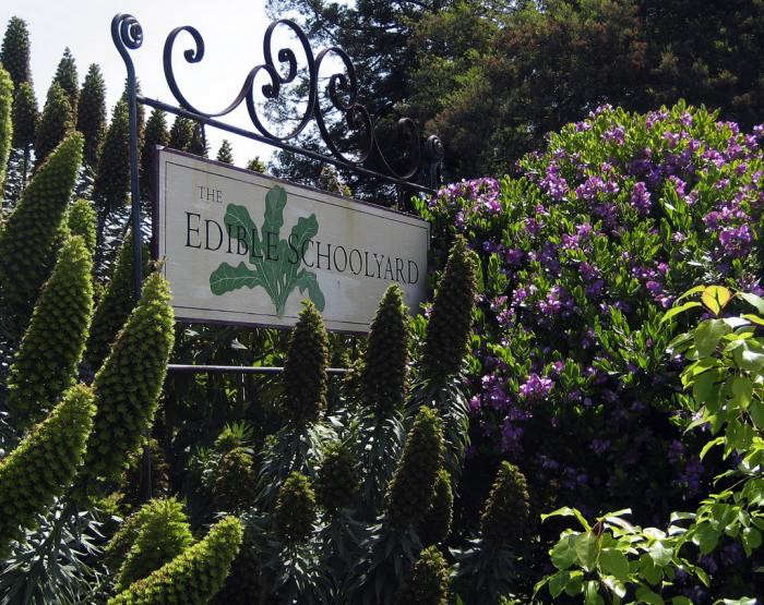 700_edible-schoolyard-sign