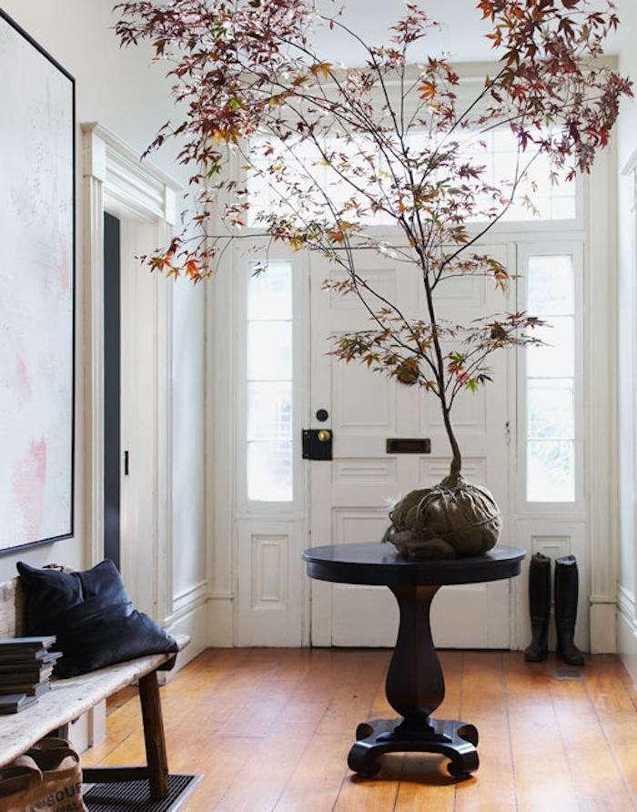 700_700-maple-tree-in-entry-michael-graydon