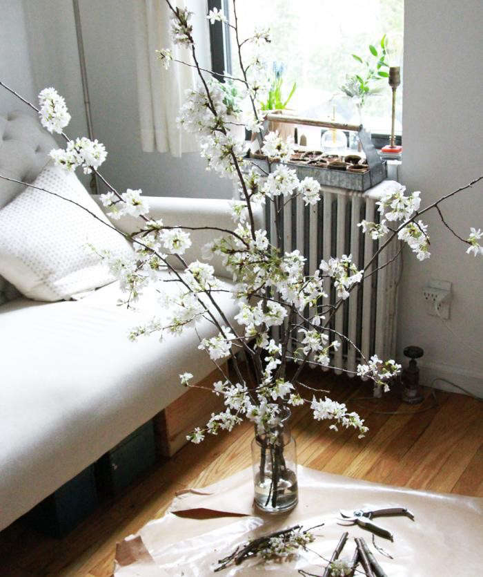 700_cherry-branches-and-floor