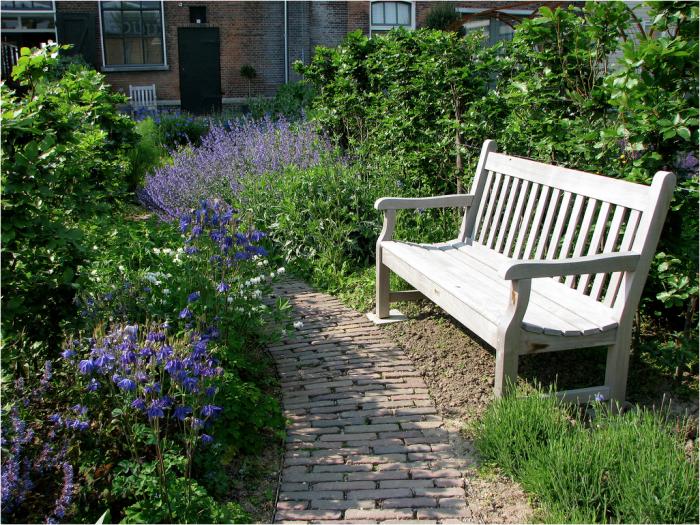 700_villa-augustus-blue-garden
