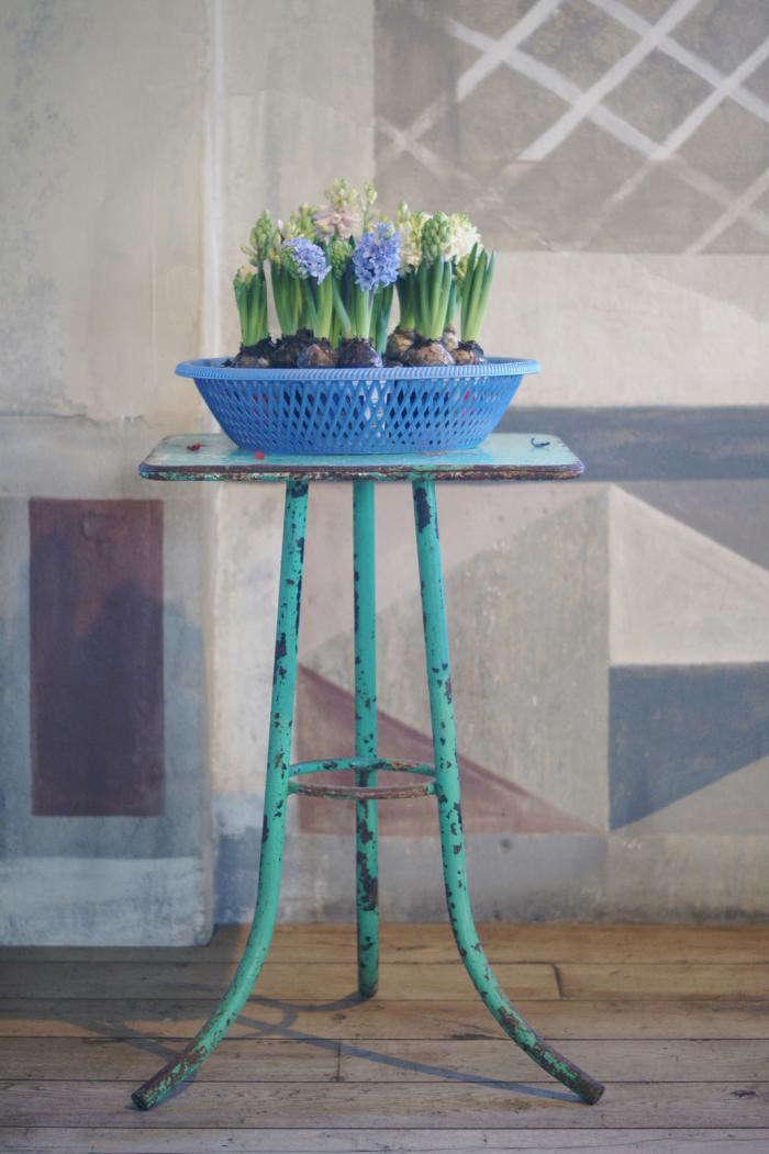 700_villa-augustus-hyacinths