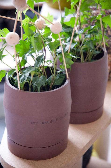 vegetale-pots