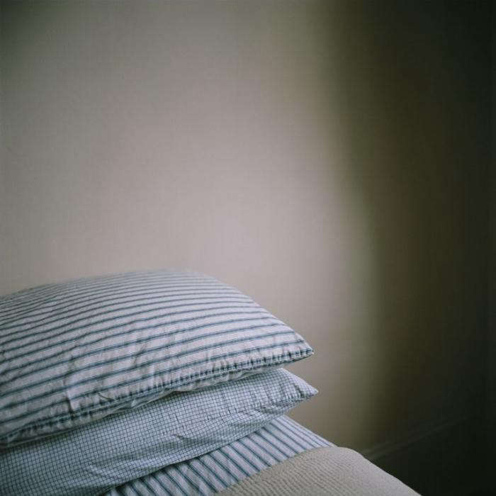 700_brian-ferry-home-pillows-jpeg