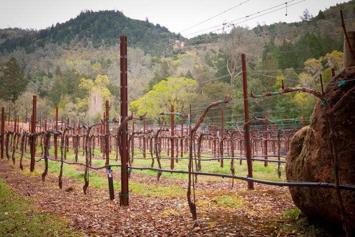 700_calistoga-ranch-vineyard
