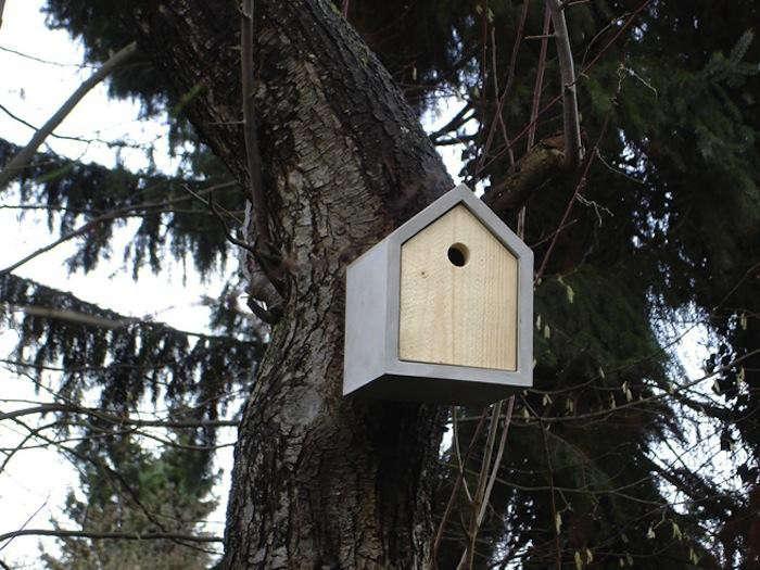 700_das-rote-birdhouse-redwood-tree