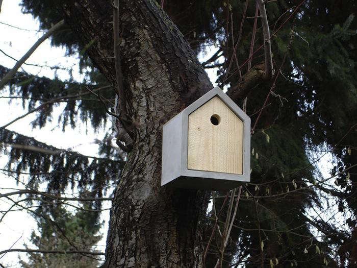 700 das rote birdhouse redwood tree