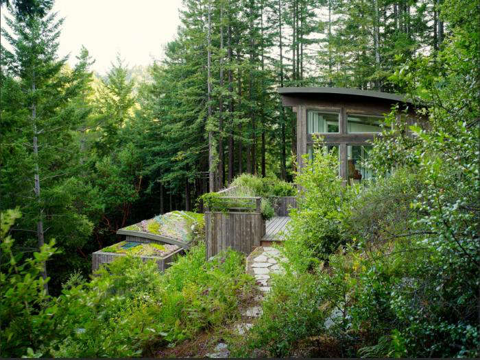 Feldman Architecture Cottages In The Mill Valley Forest