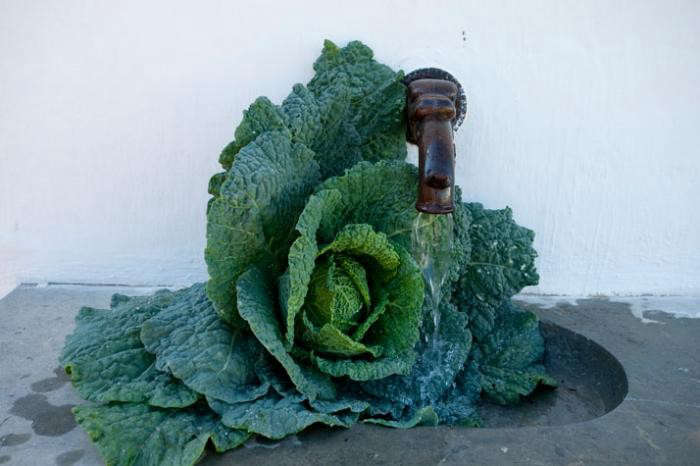 700_kale-in-the-faucet