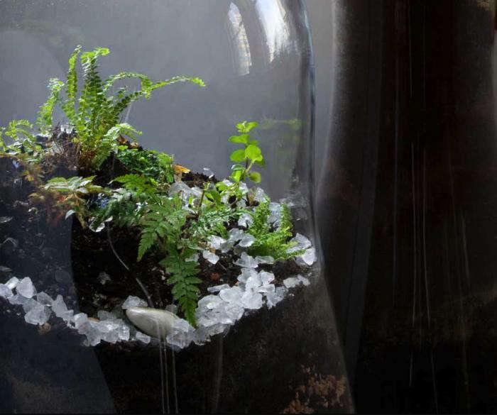 700_paula-hayes-giant-terrarium-closeup