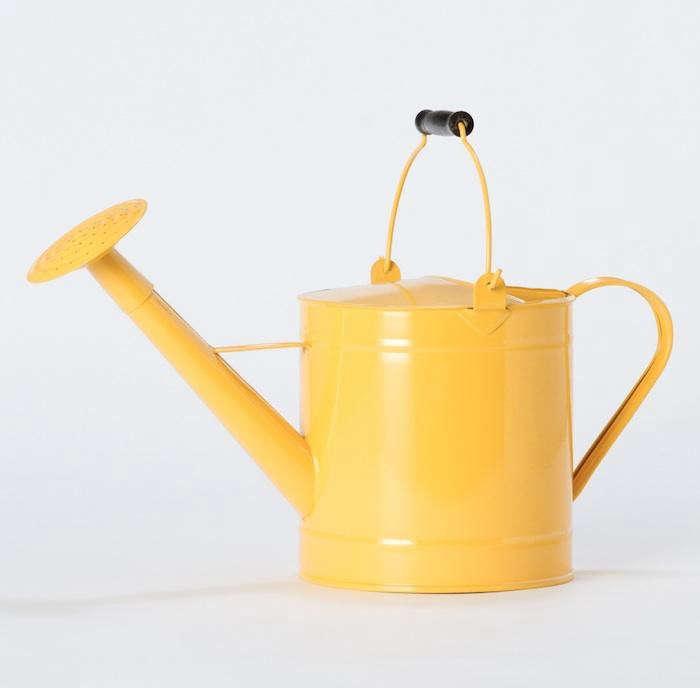 700_terrain-lemon-gardening-can