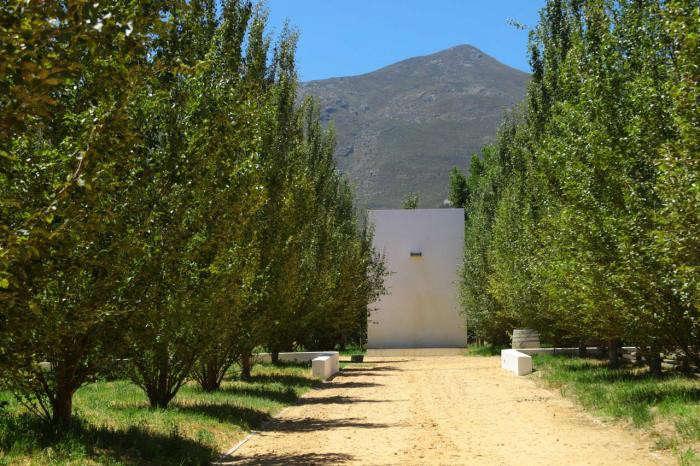 700_van-der-merwe-misczewski–cape-winelands–south-africa—03
