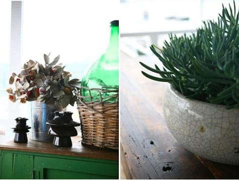 boathouse-succulents-8