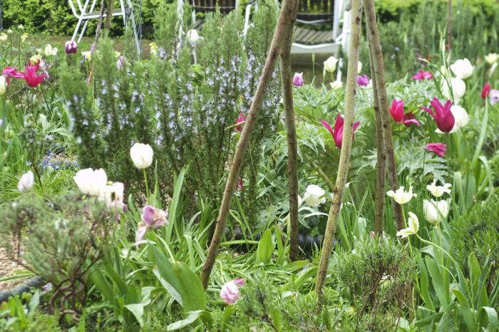 700_jane-spring-garden