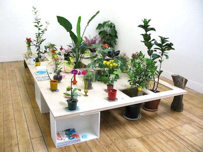 700_mr-kitly-plant-installation