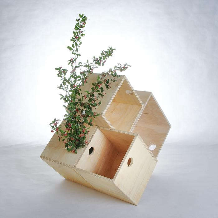 700_plywood-boxes-with-plant