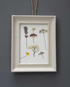 Pressed-flowers-white-frame