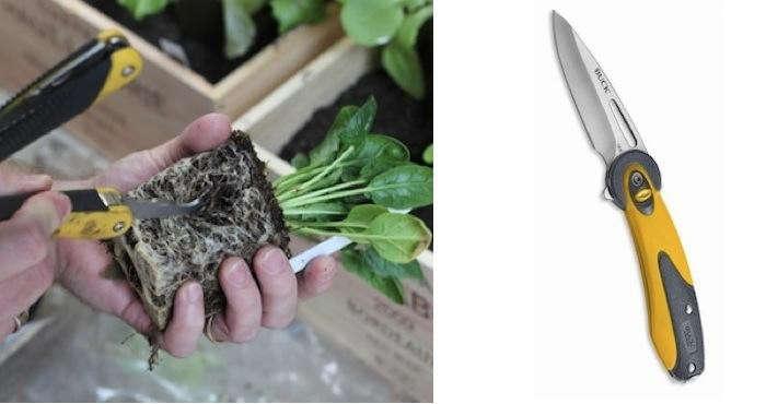 700_urban-gardening-vignette-1