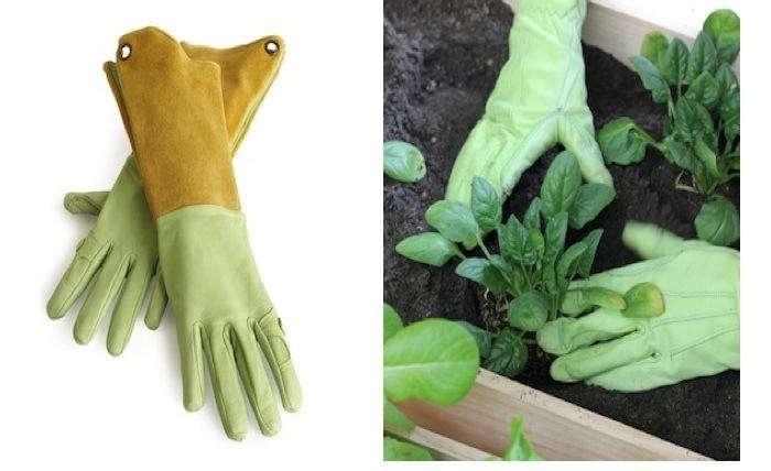 700_urban-gardening-vignette-2
