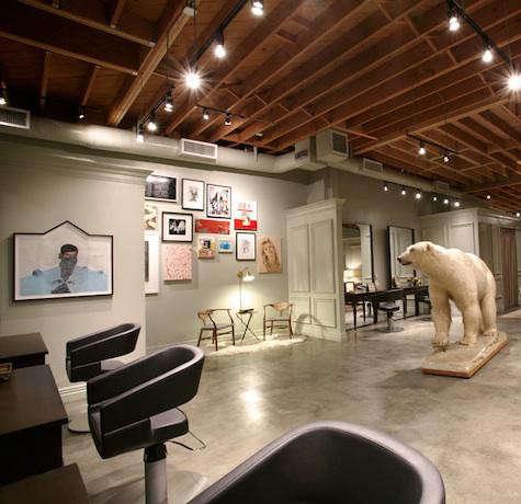 gb-salon-polar-bear