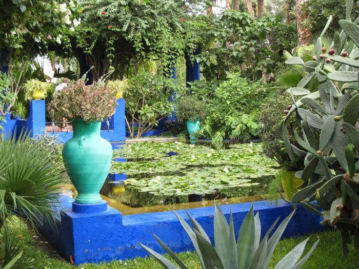 700_700-majorelle-garden-01-jpeg-jpeg