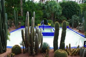 Majorelle-Garden-Louis-Majorelle-bleu-majorelle-cobalt-blue-fountain-pool-cacti