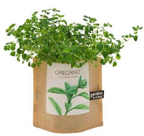 garden-in-a-bag-2
