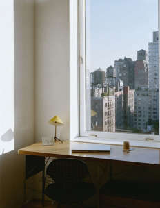 Messana-O'Rorke-Tank-House-New-York-water-tank-urban-tree-house-apartment-view-from-office