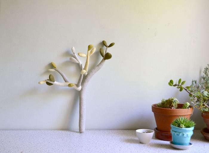 700_cocon-jade-plant
