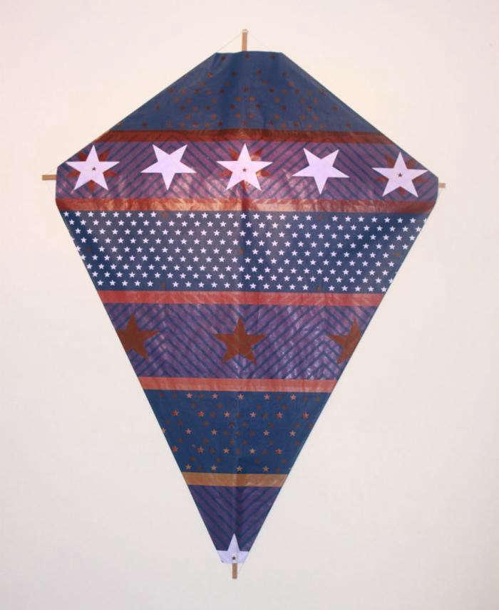 700_fredricks-and-mae-blue-and-purple-kite