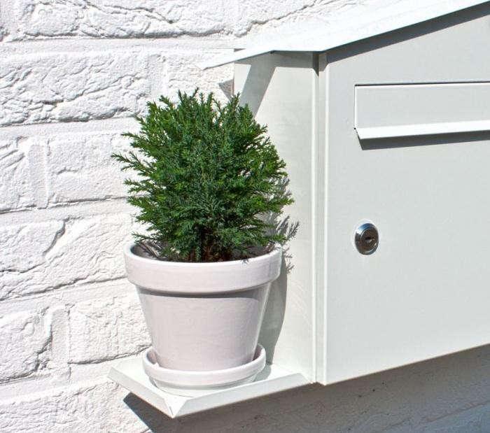 700_green-mailbox-plant
