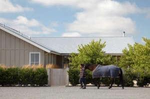 Min|Day-Sonoma-County-farmhouse-man-with-horse