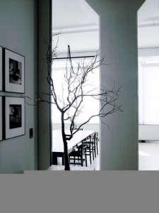 Indoor Tree Branch in a New Zealand Loft, Remodelista