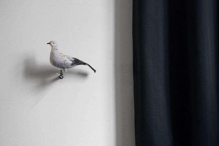 700_bar-and-co-bird-on-wall