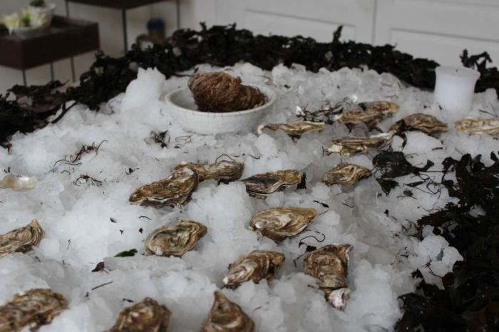 700_daladier-oysters-on-ice