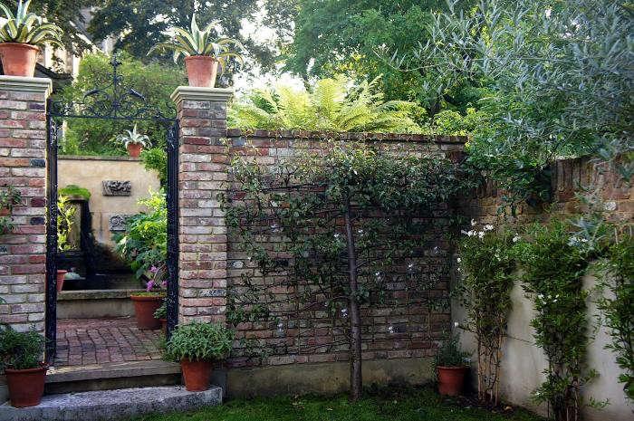 700_remodelista-will-fisher-garden-04