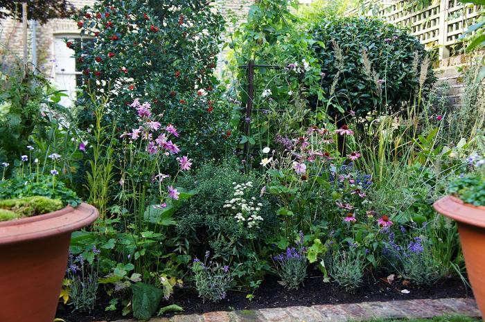 700_remodelista-will-fisher-garden-06
