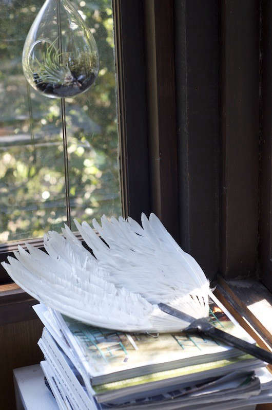 erica-tanov-feather
