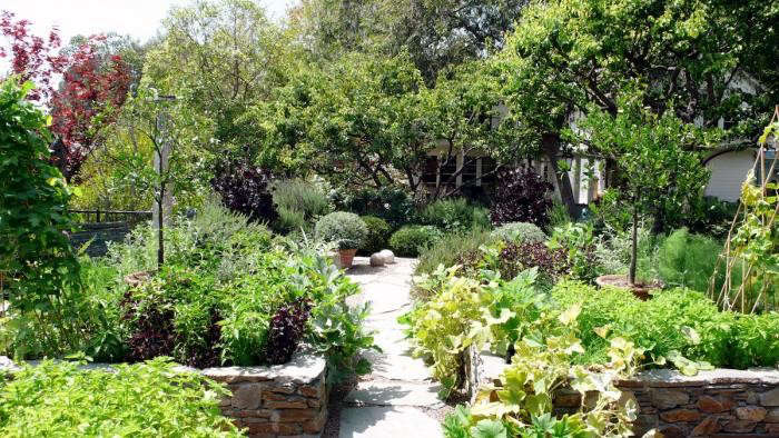 700_art-luna-kitchen-garden-2