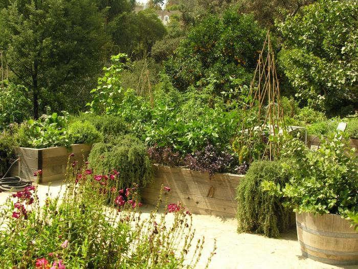 700_art-luna-kitchen-garden-far