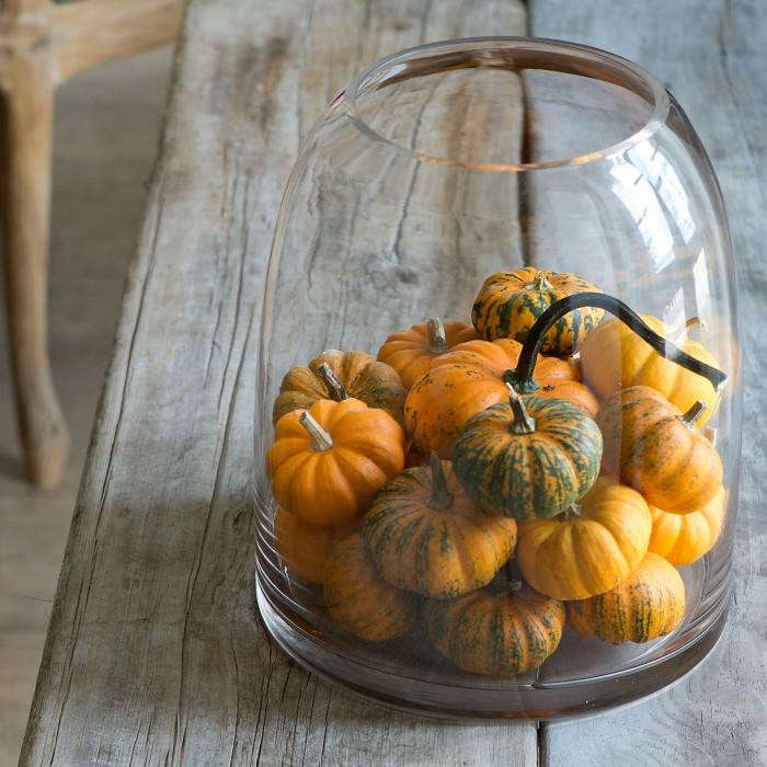 700_mini-pumpkin-bell-jar
