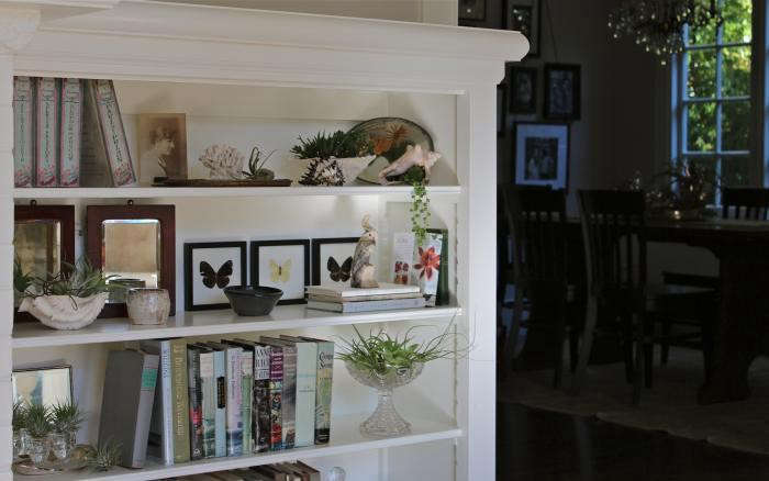700_overall-shelf-3