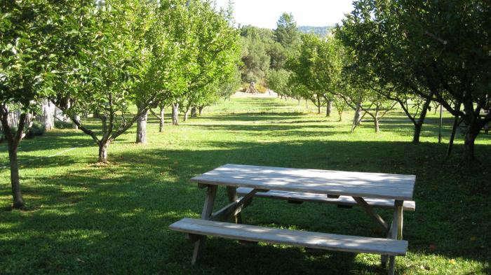700_philo-apple-farm-21